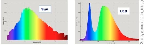 слева - спектр Солнца, справа, спектр чистого(холодного) светодиодного белого.