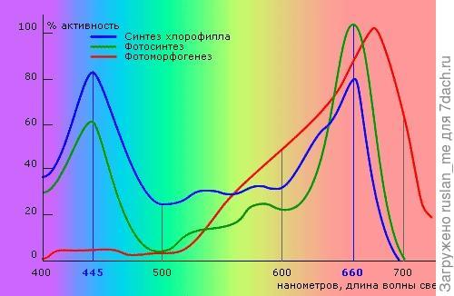 спектры поглощения растением.