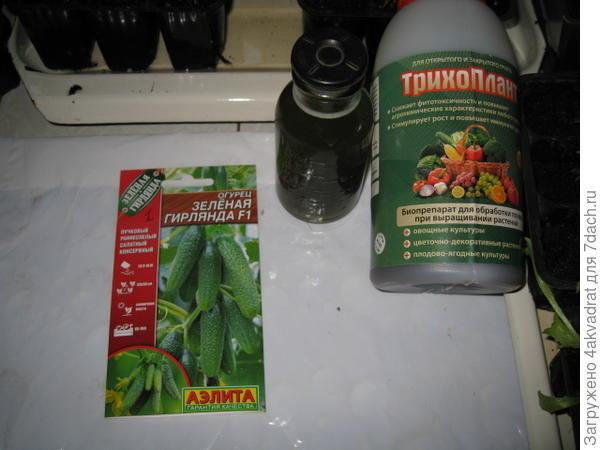 Семена огурца Зеленая гирлянда