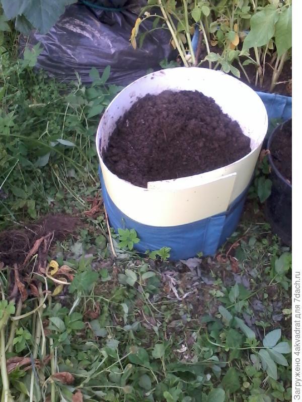 Так выглядит емкость для выращивания картофеля, но уже со вставкой, чтобы подсыпать дополнительно грунт
