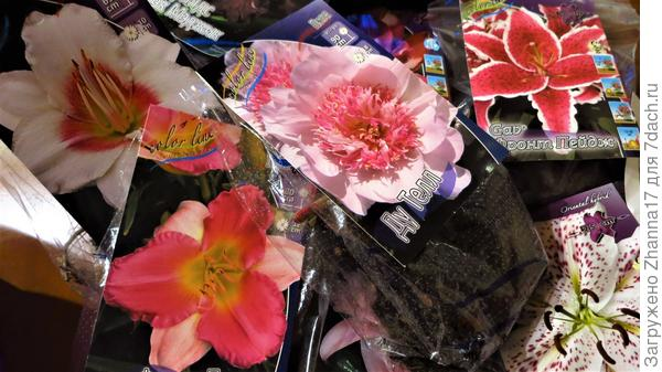 Весна на отдельно взятом столе:)