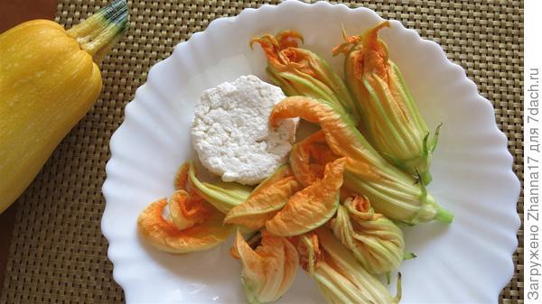 Цветки обсушить и нафаршировать сыром