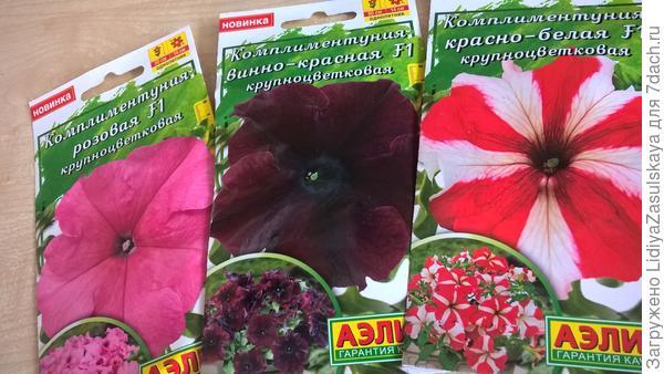 комплиментунии цветок 14 см