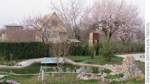 пруд весной