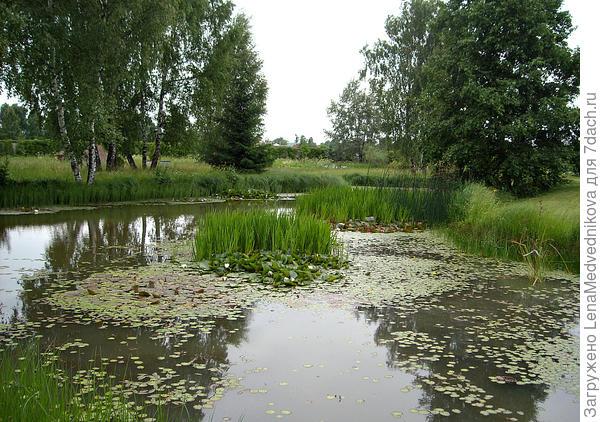 Вот он, водный парк