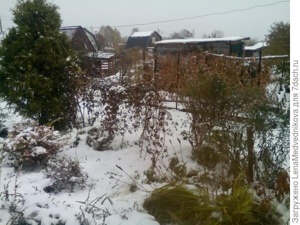 Ранний снег 2016