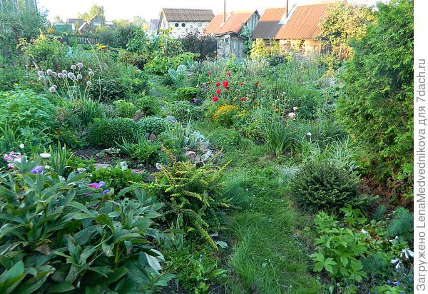 Мой сад-огород