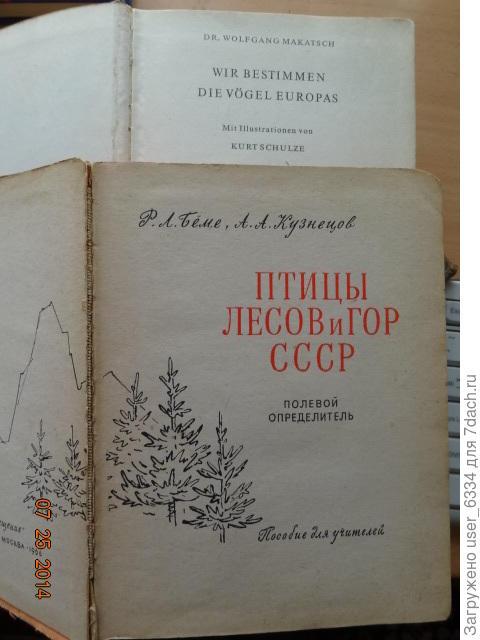 хотя аналогичный Макачу полевой определитель Бёме-Кузнецова послужил нам тоже неплохо, главным образо за счет того, что появился на 20 лет раньше.