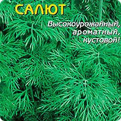 Укроп Салют, 2 г