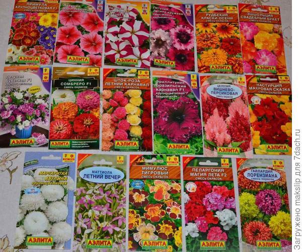 Цветы пр