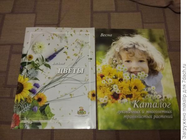 Каталог луковичных и цветочных культур