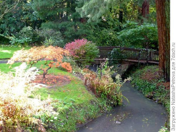 Японский пейзажный сад