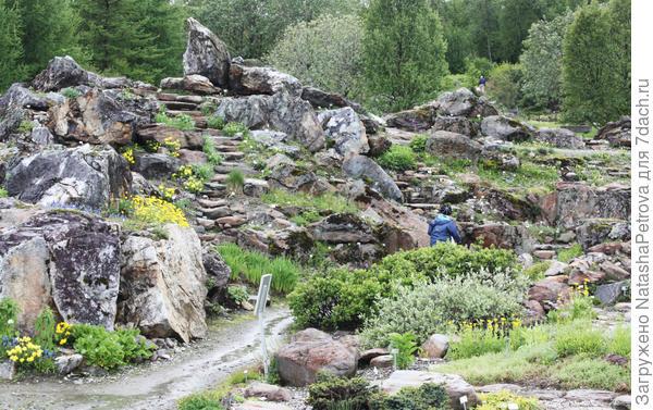 Альпийский сад. Фото с сайта http://marievikstrom.se/