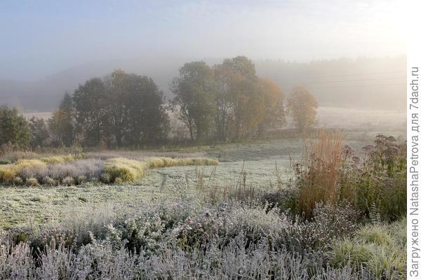 Сад новой волны Валерия Дедуха поздней осенью. Фото с сайта http://naturgarden.ru/