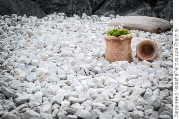 Фрагмент японского сада