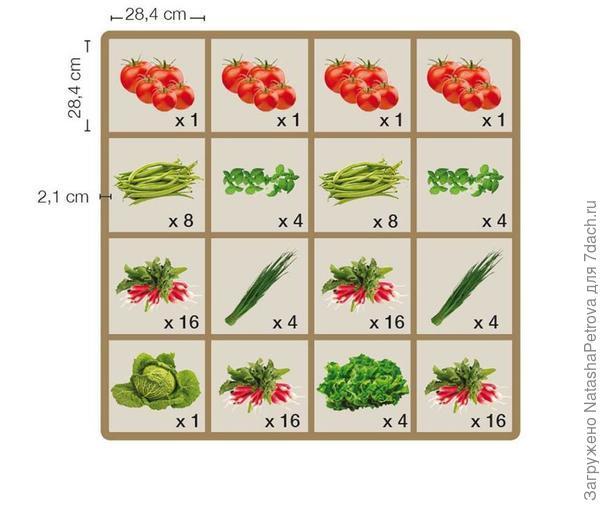 Пример посадок на модулях Фото из книги Этот удивительный квадрат