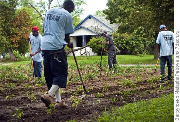 Огородничество снижает преступность. Фото с сайта johnikerd.com