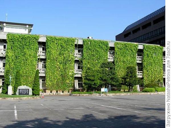 Зелёные экраны на здании компании. Фото с сайта http://global.kyocera.com