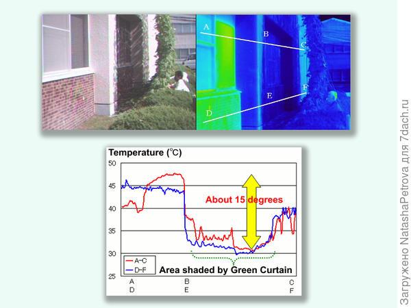 Результаты замеров температуры фасада тепловизором. Фото с сайта global.kyocera.com