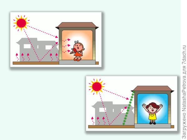 Как функционирует зелёный экран. Фото с сайта http://global.kyocera.com