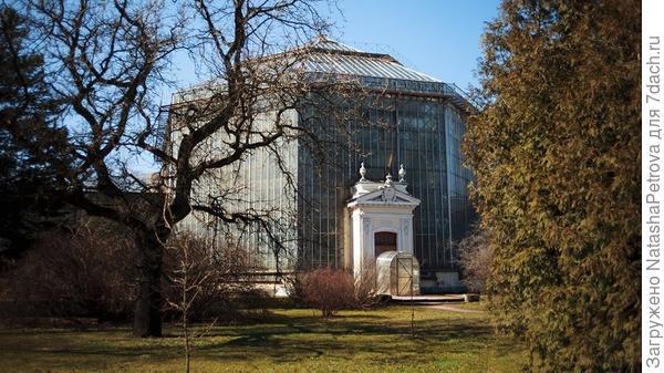 Оранжерея ботанического сада Петра Великого. Фото с сайта botsad-spb.com