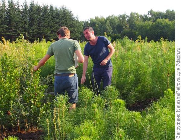 Сотрудники проекта IDENT. Фото с сайта treedivnet.ugent.be