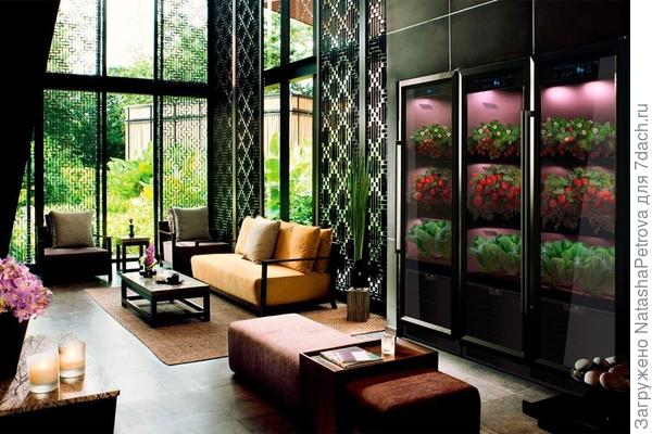 Грядка в гостиной. Фото с сайта fibonacci.farm