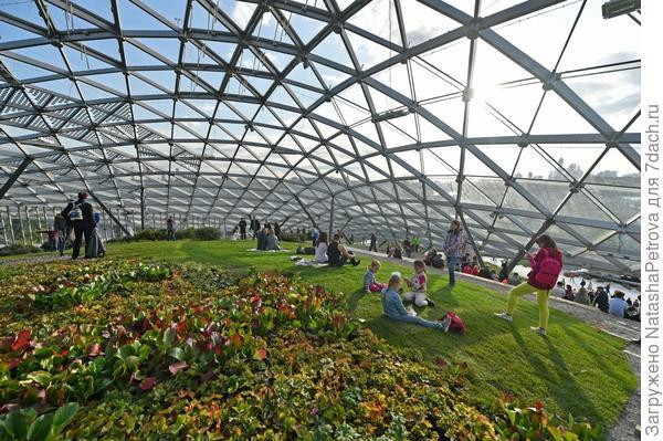 Под куполом Стеклянной коры всегда будет лето. Фото с сайта stroi.mos.ru