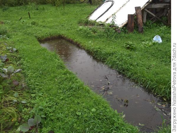 В этом году вода все лето вот так стоит