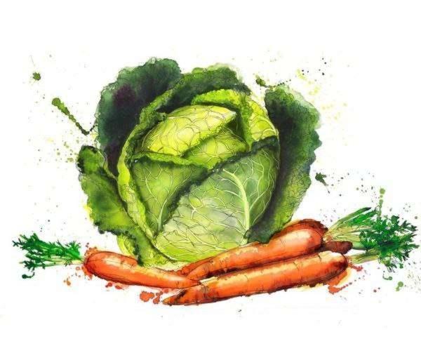 Капуста и морковь. Фото с сайта georginaluck.com