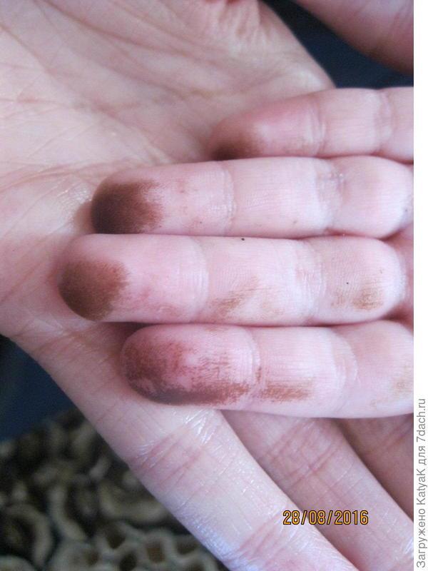 грязь от маслят