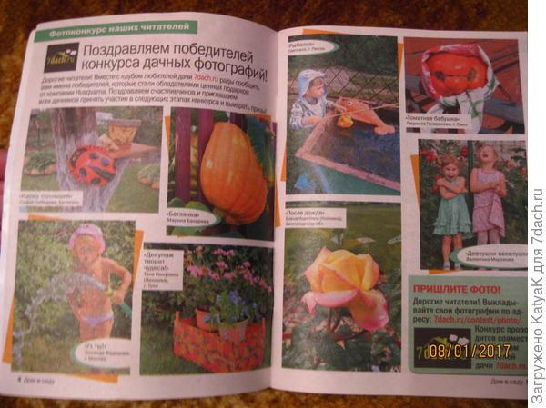 журнал дом в саду