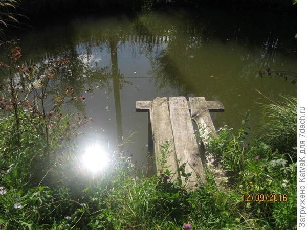 пруд с другой стороны, вот здесь нужно что- то посадить вдоль мостика