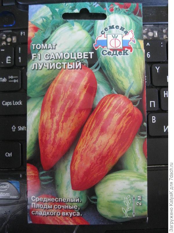 томаты семена