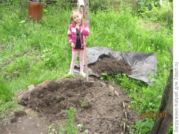копаем под клумбу