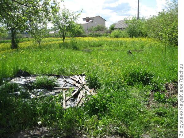 трава для Husqvarna 128R