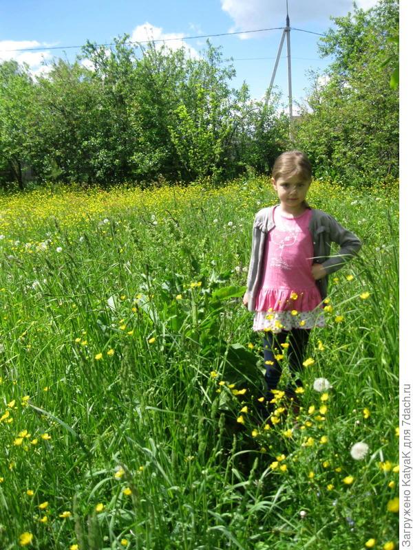 трава для покоса Husqvarna 128R