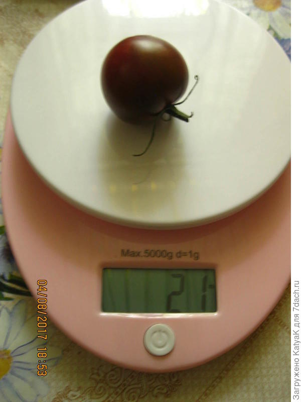 вес 1