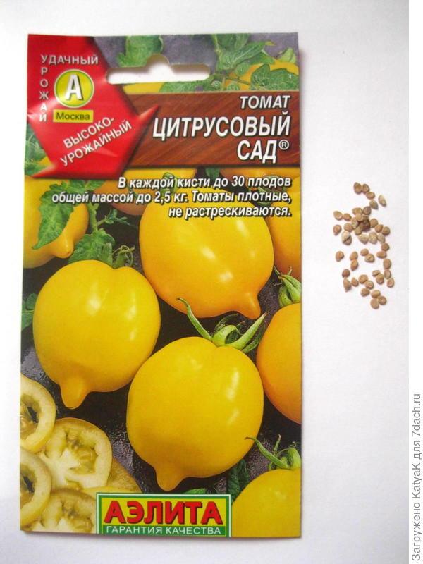 Цитрусовый сад в пакетике 46 семян, перед посевом замачивала на 2 часа в растворе Эпин экстра(по инструкции)