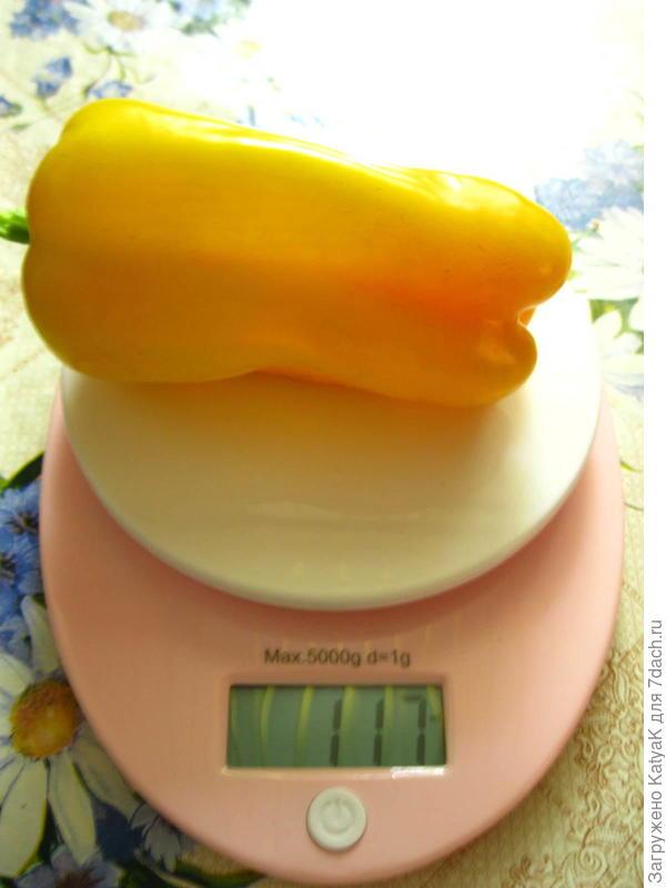 Вес перца 117 грамм