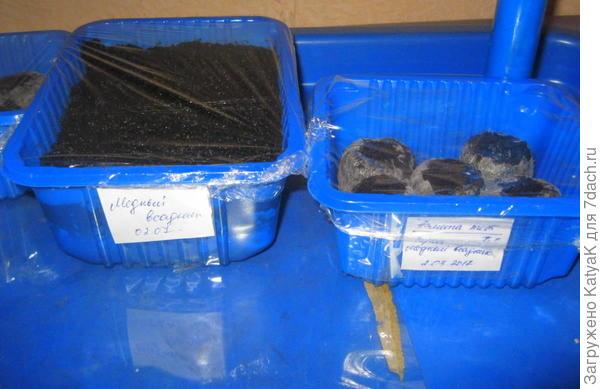 Предварительно замачиваю семена в растворе Эпин экстра (развожу по инструкции на обороте) сажаю в торфяные таблетки и в грунт