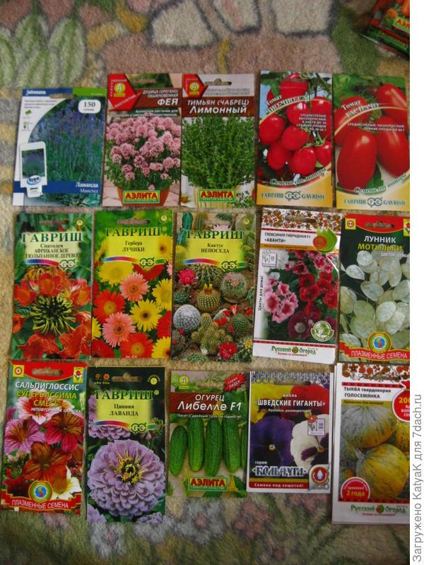 семена заказ 7 семян