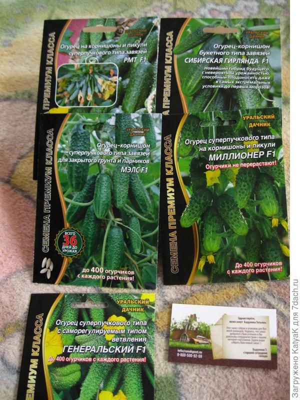 приз семена огурцов