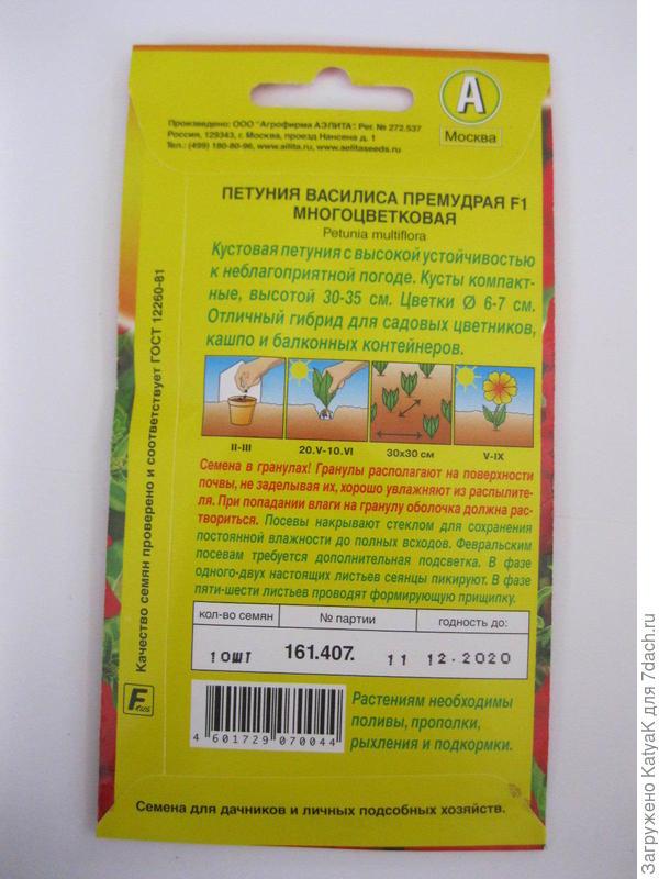 Петуния Василиса Премудрая F1 многоцветковая