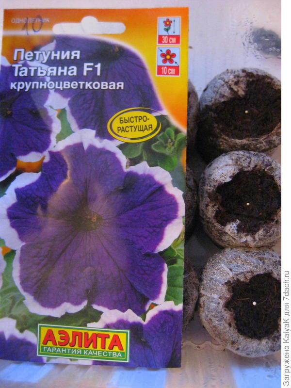 Петуния Татьяна F1 крупноцветковая