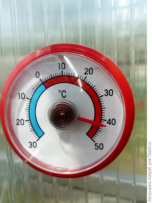 температура в поликарбонатной