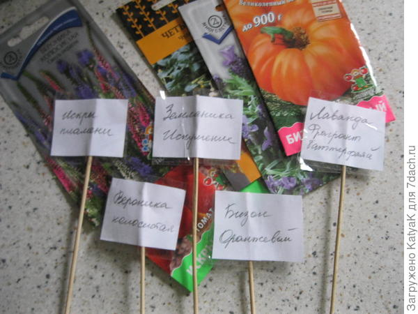 делаем таблички для растений