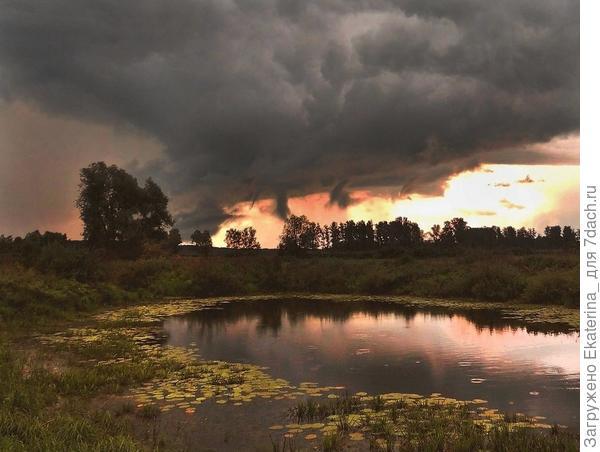 Небо затянуто тучами серыми,  грома раскаты слышны вдалеке...;