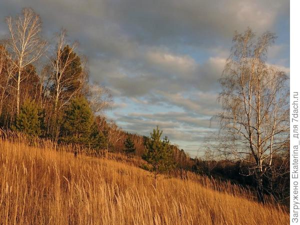 По небу осени летели облака, не закрывая плотно синь живую...