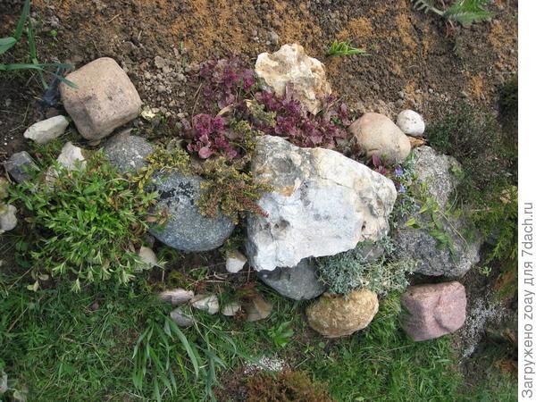 первая каменистая мини-горка.